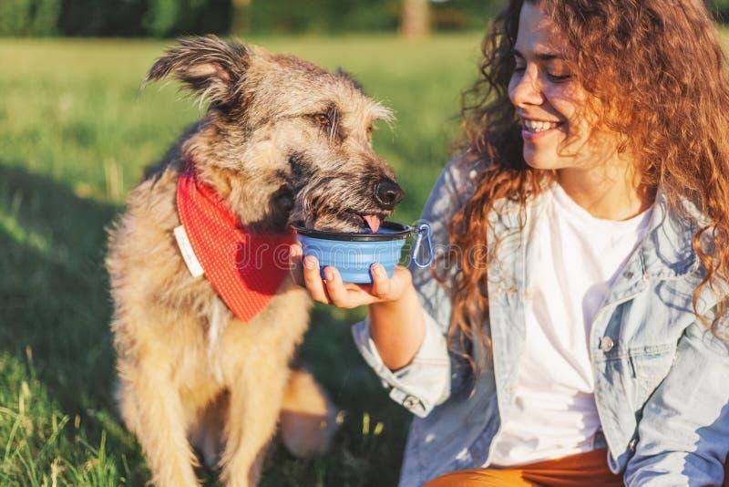 Μια νέα γυναίκα δίνει για να πιει το σκυλί της για έναν περίπατο στη δασικές θερινή θερμότητα και την αφυδάτωση των ζώων στοκ φωτογραφία