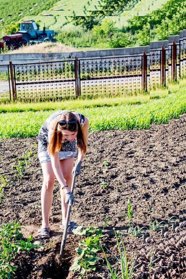 Μια νέα γυναίκα παίρνει τα ζιζάνια στον τομέα ενός farm_ στοκ φωτογραφίες με δικαίωμα ελεύθερης χρήσης