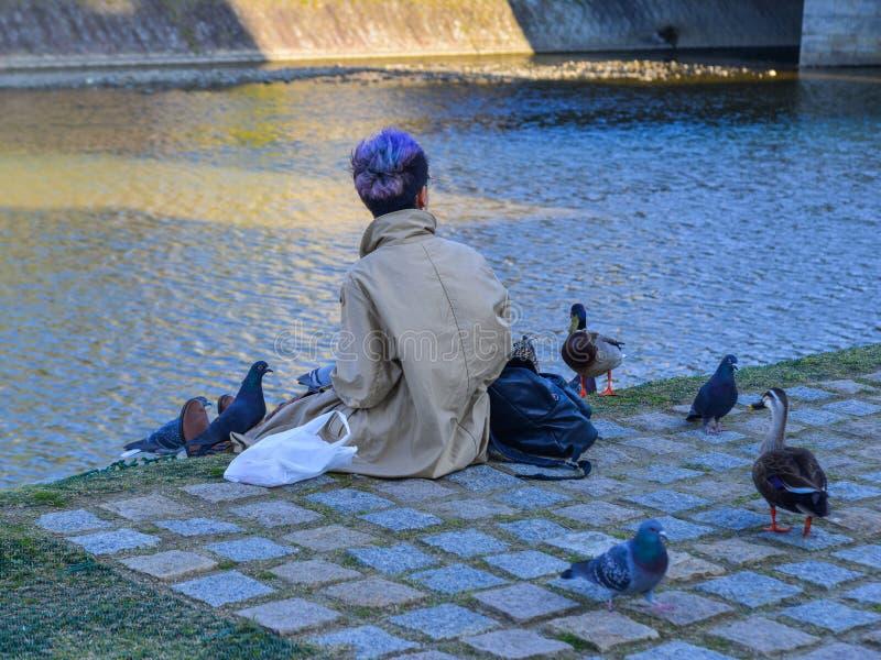 Μια νέα γυναίκα που παίζει με πολλά πουλιά στοκ φωτογραφία με δικαίωμα ελεύθερης χρήσης