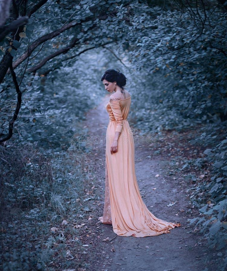Μια νέα γυναίκα brunette με έναν κομψό, hairstyle Μια πριγκήπισσα σε ένα κίτρινο εκλεκτής ποιότητας φόρεμα, στάσεις ενάντια στο σ στοκ φωτογραφία με δικαίωμα ελεύθερης χρήσης