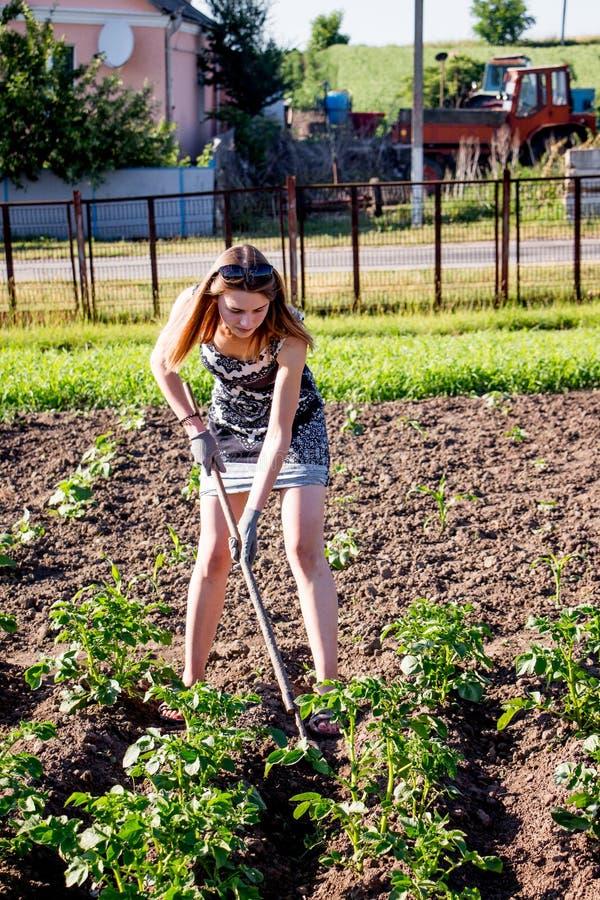 Μια νέα ελκυστική εργασία κοριτσιών στον κήπο, έδαφος διαδικασίας, αυξάνεται po στοκ φωτογραφία με δικαίωμα ελεύθερης χρήσης