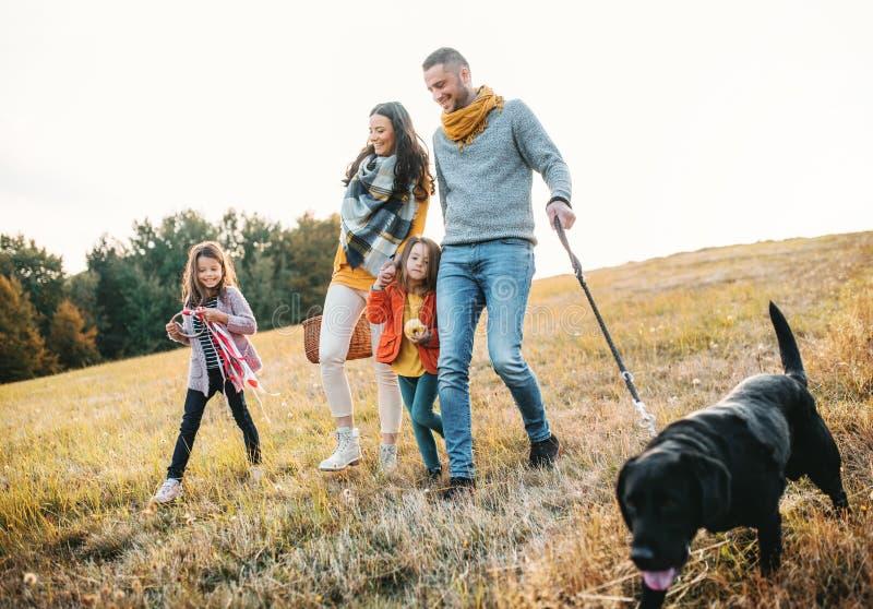 Μια νέα οικογένεια με δύο μικρά παιδιά και ένα σκυλί σε έναν περίπατο στη φύση φθινοπώρου στοκ φωτογραφίες