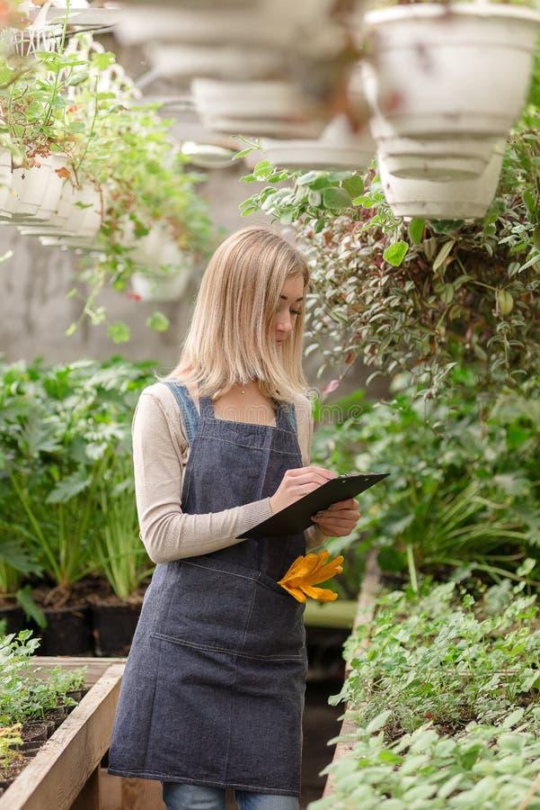 Μια νεαρή κηπουρός κρατά αρχείο λουλουδιών σε θερμοκήπιο στοκ φωτογραφία με δικαίωμα ελεύθερης χρήσης