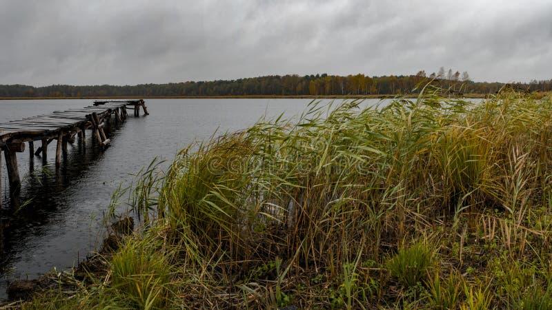 Μια νεφελώδης ημέρα στη λίμνη στοκ εικόνα με δικαίωμα ελεύθερης χρήσης