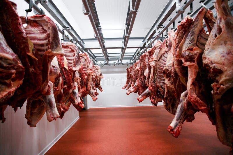 Μια ομάδα τεμαχισμένης ακατέργαστης ένωσης και τακτοποιεί και επεξεργασίας κρέατος σε μια κατάθεση σε μια αποθήκευση, σε ένα εργο στοκ εικόνες με δικαίωμα ελεύθερης χρήσης
