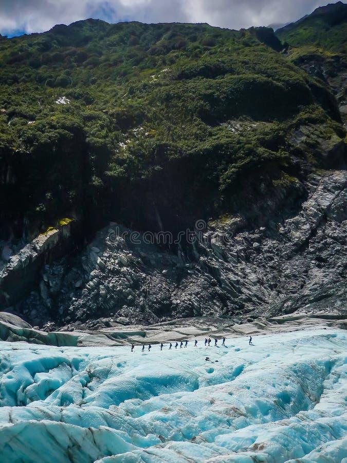 Μια ομάδα τουριστών παίρνει έναν καθοδηγημένο περίπατο στο νότιο νησί Νέα Ζηλανδία παγετώνων αλεπούδων στοκ εικόνα