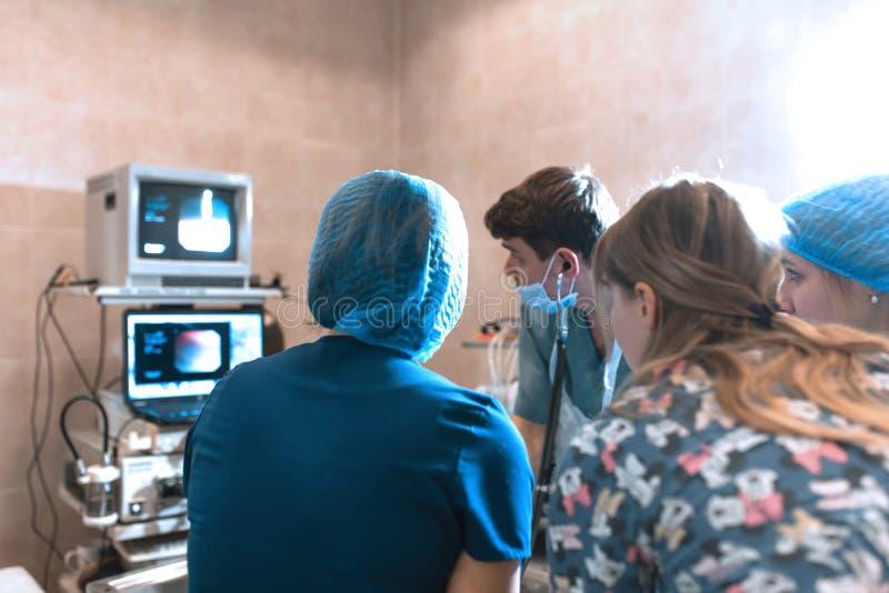 Μια ομάδα των χειρούργων κατοικίδιων ζώων ελέγχει τους αισθητήρες στις οθόνες κατά την διάρκεια της χειρουργικής επέμβασης στοκ εικόνες