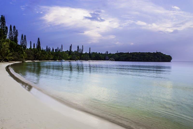 Μια παραλία παραδείσου από το νησί των πεύκων στοκ φωτογραφία με δικαίωμα ελεύθερης χρήσης