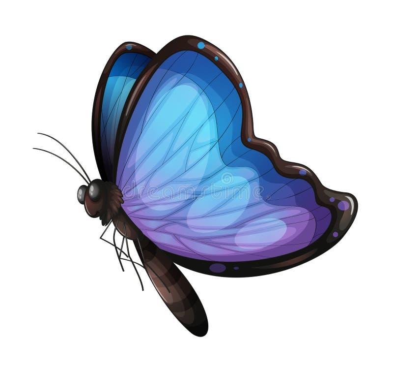 Μια πεταλούδα διανυσματική απεικόνιση
