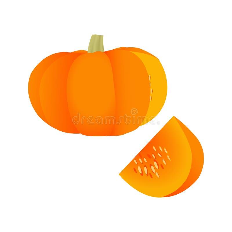 Μια πορτοκαλιά κολοκύθα και ένα κομμάτι της κολοκύθας ελεύθερη απεικόνιση δικαιώματος