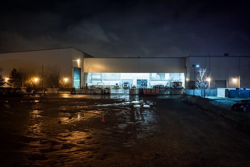 Μια πόλη της νύχτας δυνατότητας ανακύκλωσης του Σικάγου στοκ εικόνα με δικαίωμα ελεύθερης χρήσης