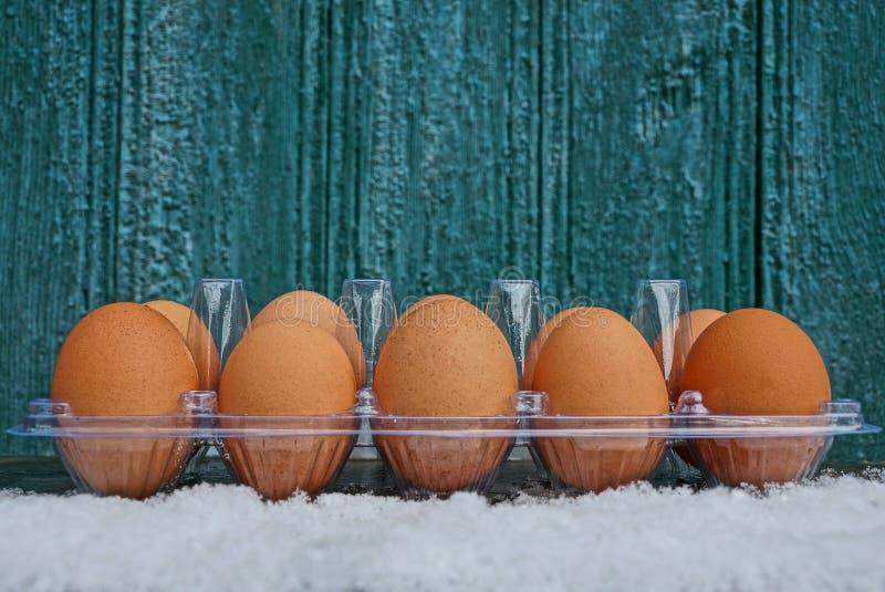 Μια σειρά των καφετιών φρέσκων αυγών στην ανοικτή πλαστική συσκευασία στο άσπρο χιόνι ενάντια σε έναν πράσινο τοίχο στοκ φωτογραφίες με δικαίωμα ελεύθερης χρήσης