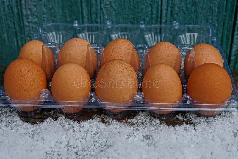 Μια σειρά των καφετιών φρέσκων αυγών στην ανοικτή πλαστική συσκευασία στο άσπρο χιόνι ενάντια σε έναν πράσινο τοίχο στοκ φωτογραφία με δικαίωμα ελεύθερης χρήσης