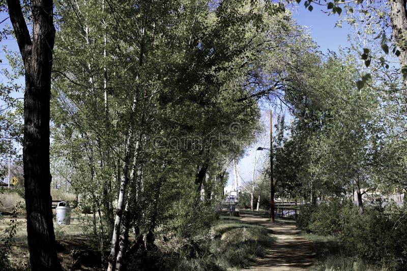 Μια σκιερή πορεία στοκ φωτογραφίες
