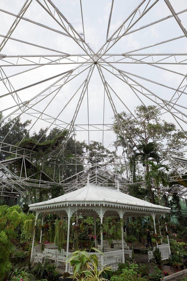 Μια στέγη πράσινου στοκ εικόνα με δικαίωμα ελεύθερης χρήσης