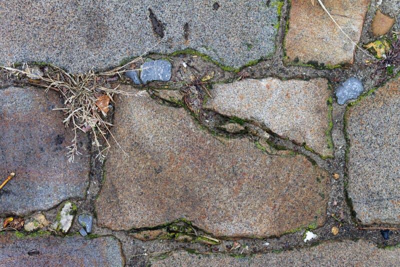 Μια στενή άποψη σχετικά με ένα τούβλο ενός παλαιού δρόμου τούβλου Τούβλο, πράσινη χλόη, βρύο στοκ φωτογραφία με δικαίωμα ελεύθερης χρήσης