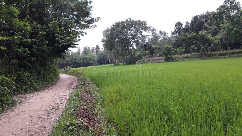 Μια του χωριού πορεία στοκ εικόνα