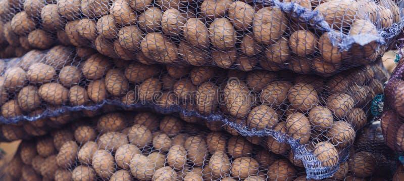 Μια τσάντα των ακατέργαστων και βρώμικων πατατών Φρέσκια κινηματογράφηση σε πρώτο πλάνο πατατών σε ένα πλέγμα στοκ φωτογραφία με δικαίωμα ελεύθερης χρήσης