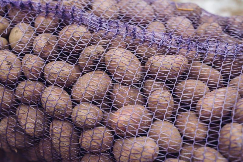 Μια τσάντα των ακατέργαστων και βρώμικων πατατών Φρέσκια κινηματογράφηση σε πρώτο πλάνο πατατών σε ένα πλέγμα στοκ εικόνα
