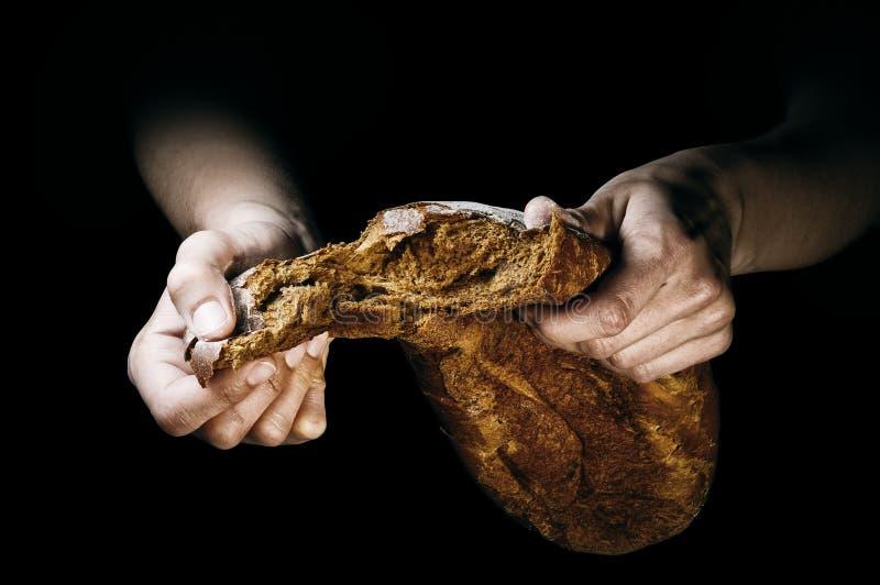 Μια φραντζόλα του πρόσφατα ψημένου ψωμιού στα χέρια ενός αρτοποιού στοκ φωτογραφία