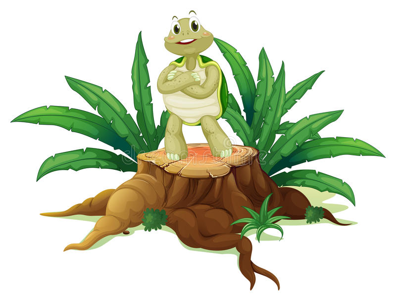 Μια χελώνα που στέκεται επάνω από το ξύλο ελεύθερη απεικόνιση δικαιώματος