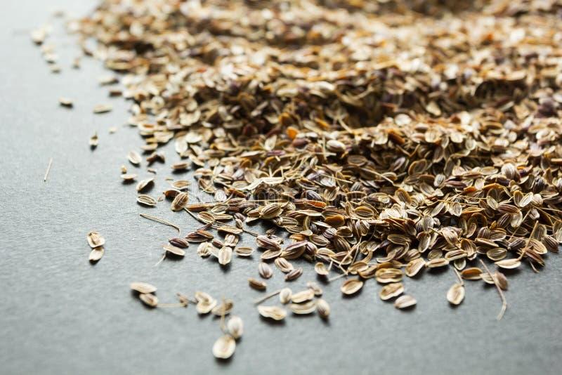 Μια χούφτα των ξηρών οργανικών σπόρων άνηθου, εναλλακτική ιατρική στοκ φωτογραφίες