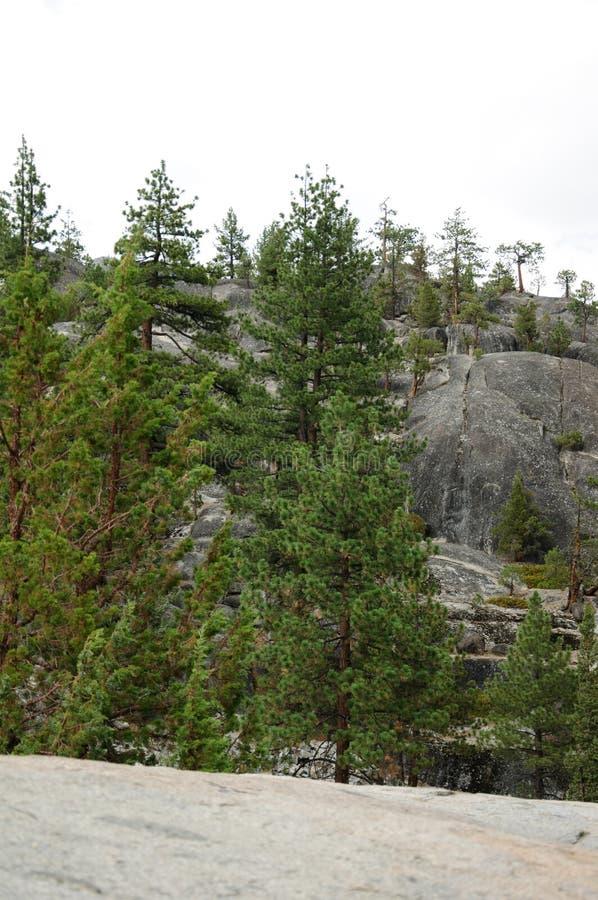 Μια όμορφη άποψη του βουνού Καλιφόρνιας στοκ εικόνα