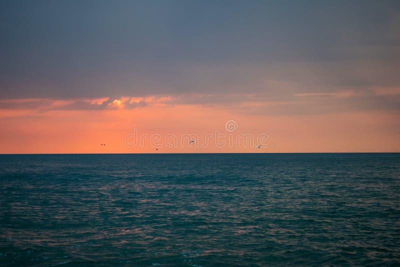 Μια όμορφη ανατολή στον ωκεανό Βάρκα και βράχοι κοντά στην ακτή κύκνοι κατά την πτήση στοκ εικόνες