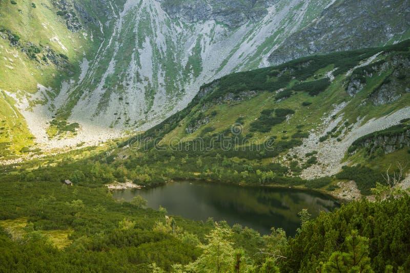 Μια όμορφη, καθαρή λίμνη στην κοιλάδα βουνών στην ήρεμη, ηλιόλουστη ημέρα Τοπίο βουνών με το νερό το καλοκαίρι στοκ εικόνες με δικαίωμα ελεύθερης χρήσης