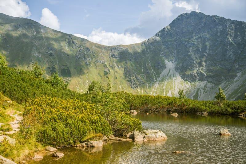 Μια όμορφη, καθαρή λίμνη στην κοιλάδα βουνών στην ήρεμη, ηλιόλουστη ημέρα Τοπίο βουνών με το νερό το καλοκαίρι στοκ εικόνες