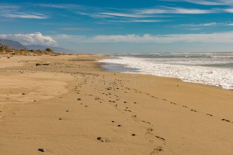 Μια όμορφη κενή χρυσή παραλία δυτικών ακτών άμμου στο νότιο νησί της Νέας Ζηλανδίας στοκ φωτογραφία