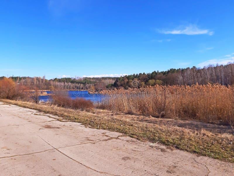 Μια όμορφη λίμνη την πρώιμη άνοιξη στοκ εικόνα με δικαίωμα ελεύθερης χρήσης