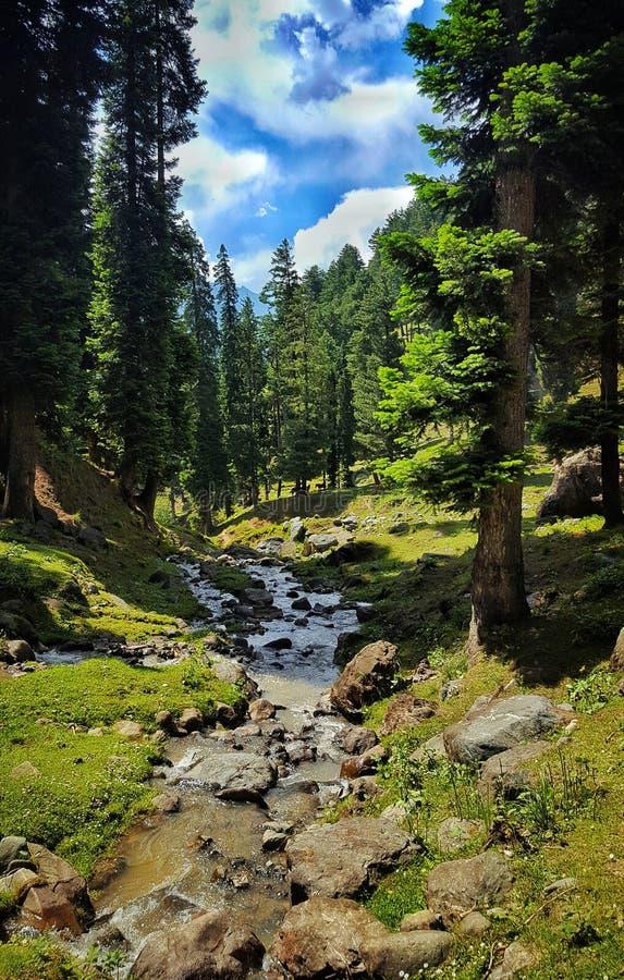 Μια όμορφη φυσική άποψη Pahalgam στοκ εικόνα