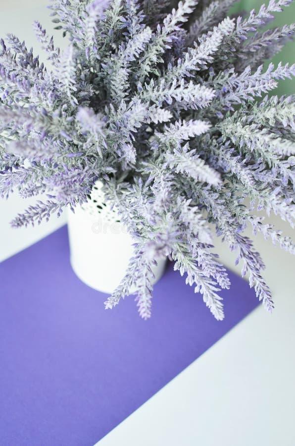Μια lavender ανθοδέσμη σε ένα βάζο σε ένα άσπρο ιώδες υπόβαθρο στοκ εικόνα