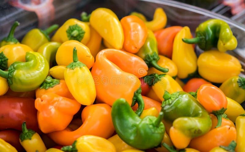 Μικρά ή νάνα κίτρινα, κόκκινα, και πράσινα πιπέρια κουδουνιών στοκ φωτογραφία με δικαίωμα ελεύθερης χρήσης