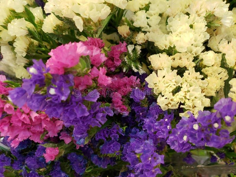 μικρά λουλούδια στα διαφορετικά χρώματα σε μια floral ανθοδέσμη, ένα υπόβαθρο και μια σύσταση στοκ εικόνα