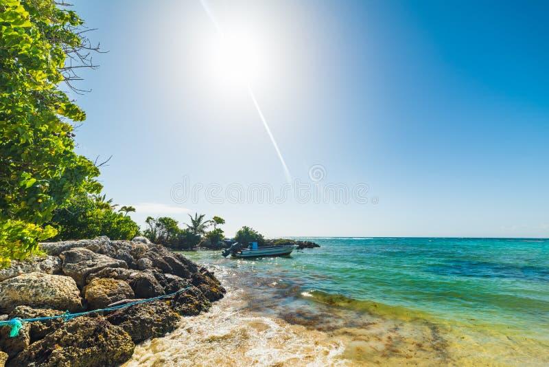 Μικρή βάρκα που δένεται στην παραλία Clairs σταφίδων στη Γουαδελούπη στοκ εικόνες με δικαίωμα ελεύθερης χρήσης