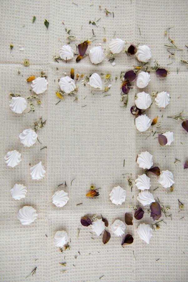 Μικρή διακοσμημένη μαρέγκα στοκ φωτογραφίες με δικαίωμα ελεύθερης χρήσης