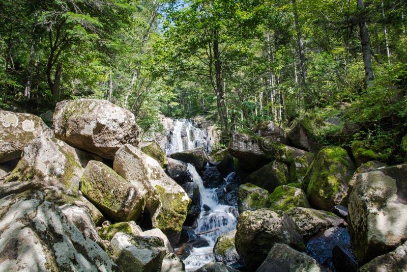 Μικρή ροή ποταμών μεταξύ των μεγάλων λίθων στοκ εικόνα με δικαίωμα ελεύθερης χρήσης