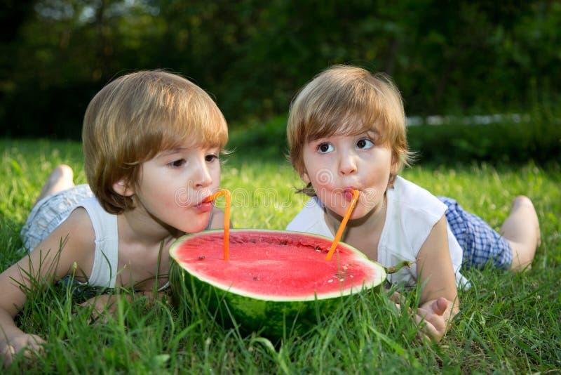Μικροί δίδυμοι αδερφοί που τρώνε το καρπούζι στην πράσινη χλόη στο θερινό πάρκο στοκ εικόνα