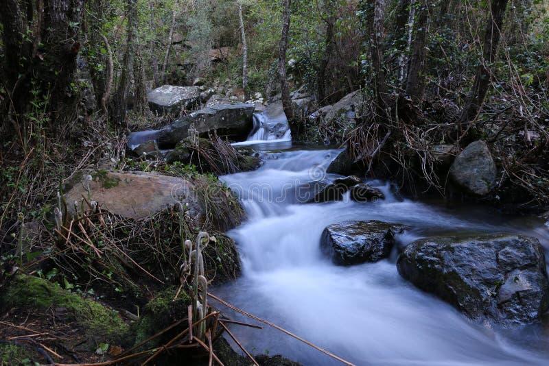 Μικροί καταρράκτες στο κανάλι ποταμών στοκ φωτογραφία