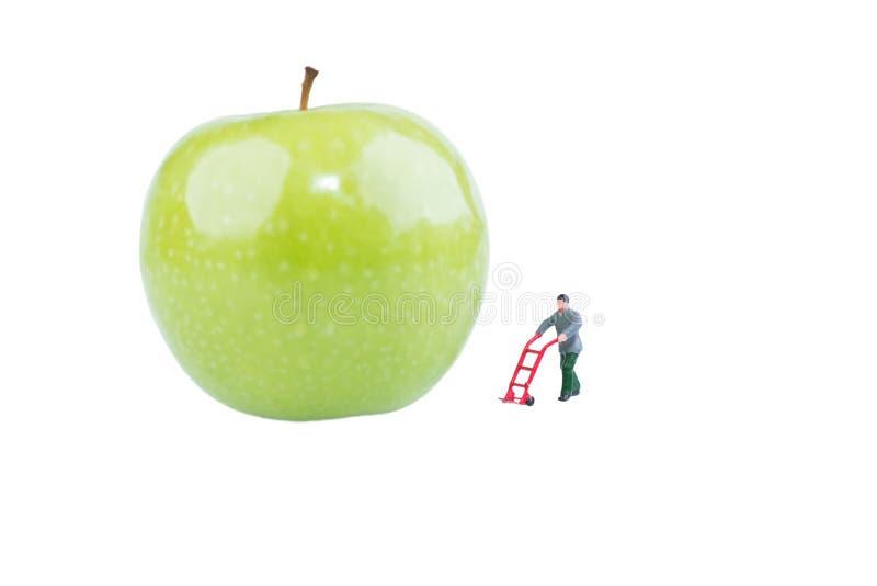 Μικροσκοπικός εργαζόμενος στο φρέσκο πράσινο μήλο στοκ φωτογραφίες με δικαίωμα ελεύθερης χρήσης