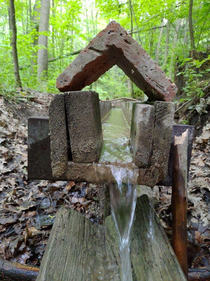 Μικροσκοπικός καταρράκτης στο δάσος στοκ φωτογραφία