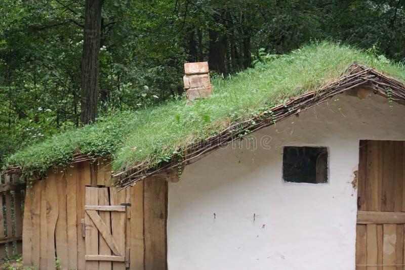 Μικροσκοπικός λίγο σπίτι με τη στέγη χλόης στο Εθνικό Μουσείο σύνθετο στοκ εικόνες