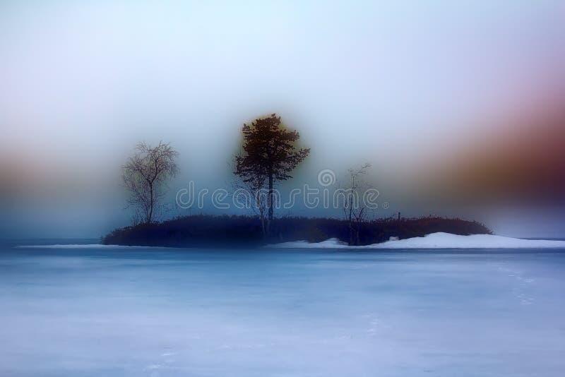 μικροσκοπικό νησάκι (eyot) στην παγωμένη λίμνη με τη δίδυμη σημύδα και το πεύκο στην ομίχλη στοκ φωτογραφία