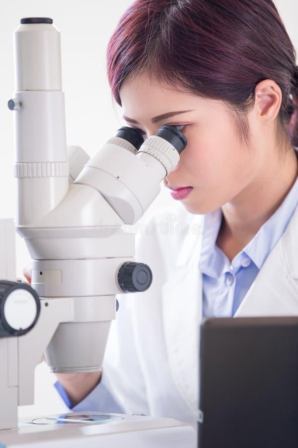 Μικροσκόπιο χρήσης επιστημόνων γυναικών στοκ εικόνες με δικαίωμα ελεύθερης χρήσης