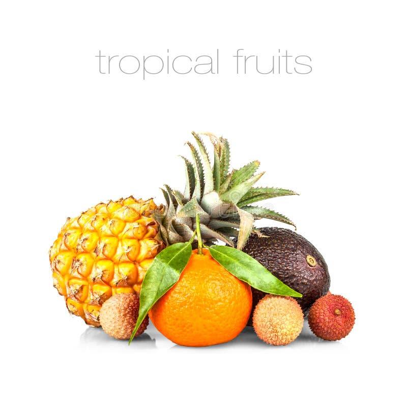 Μικρός ανανάς με το αβοκάντο, το lychee και το μανταρίνι στοκ φωτογραφία με δικαίωμα ελεύθερης χρήσης