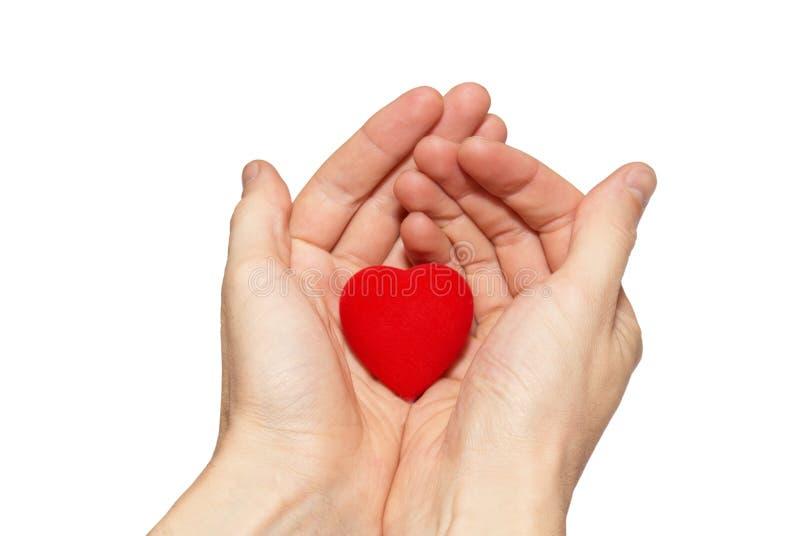 μικρός βαλεντίνος καρδιών στοκ εικόνες με δικαίωμα ελεύθερης χρήσης