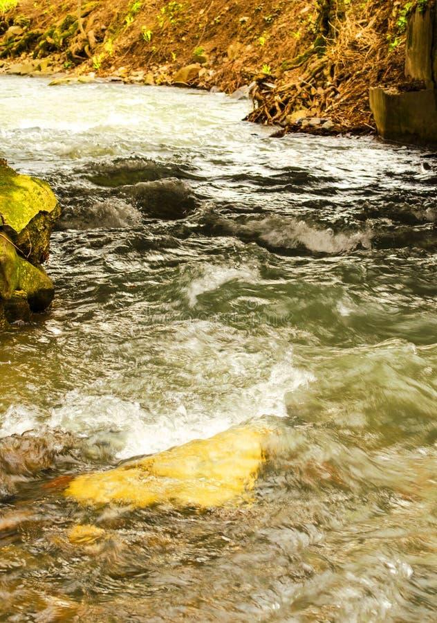 Μικρός ποταμός βουνών στοκ φωτογραφία