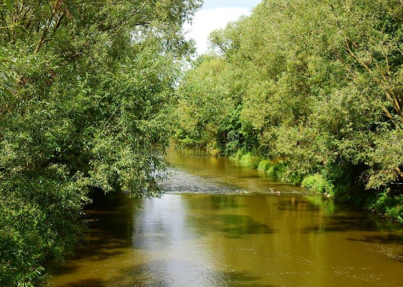 Μικρός ποταμός Panew σε Turawa στοκ φωτογραφία